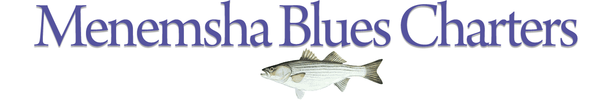 Menemsha Blues Charters